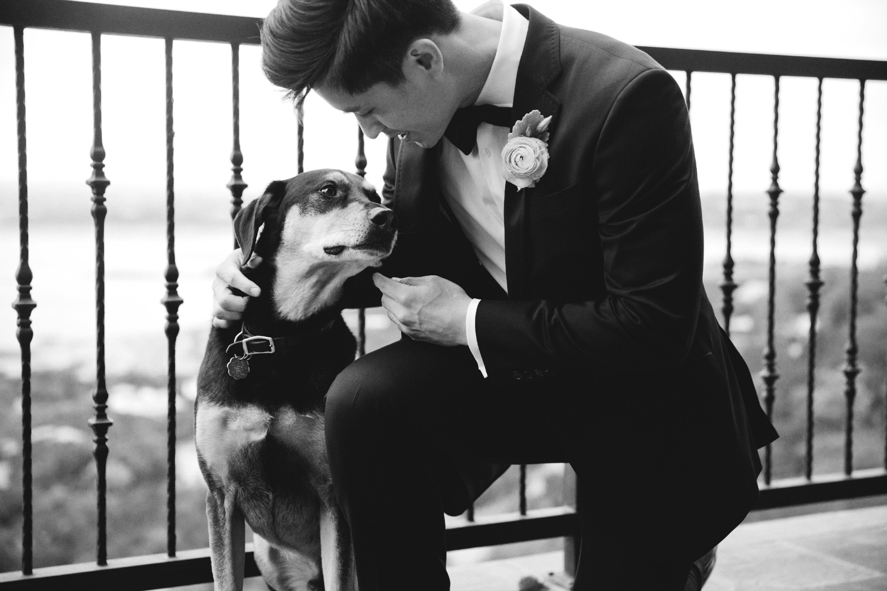 groom and his dog on the wedding day